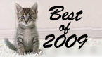 Best of 2009 Kitten